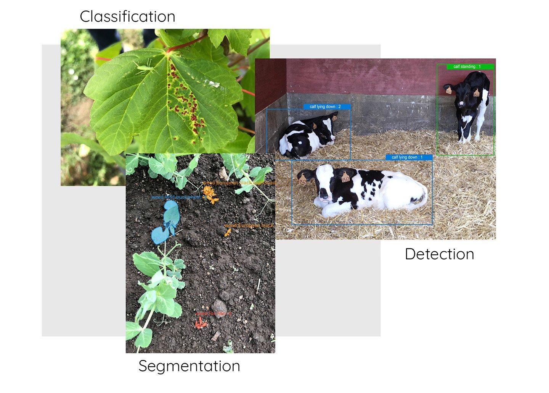 annotations-images-agricultures-dilepix_EN