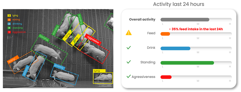 Dilepix-pig-activity-detection
