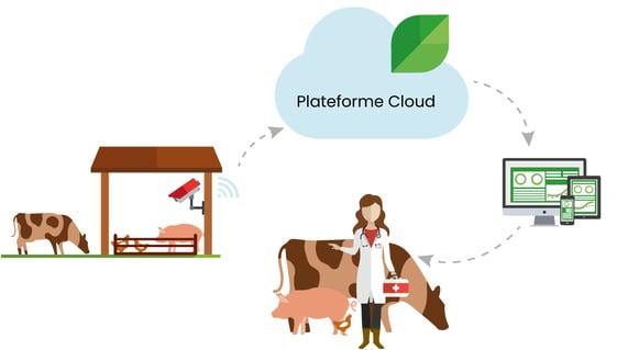 plateforme-logicielle-cloud-dilepix
