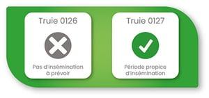 module-insemination-truie-dilepix