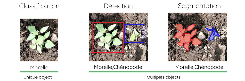 schema-classification-detection-segmentation-EN