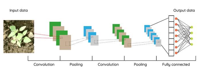 schema-convolutional-neural-network