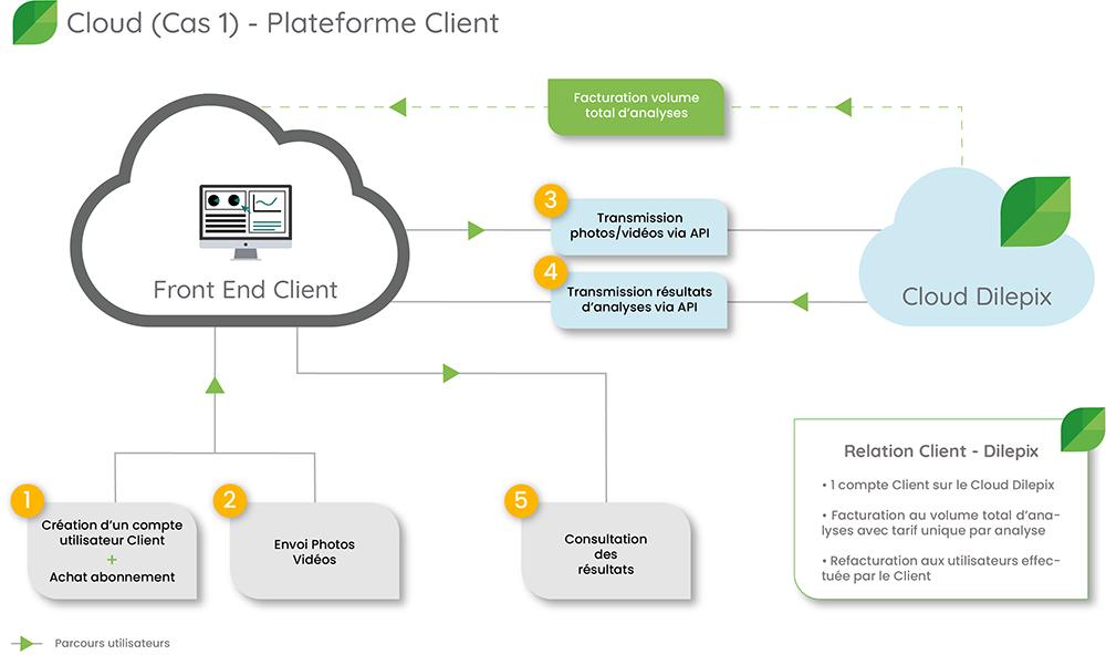 Cloud-scenario1-dilepix
