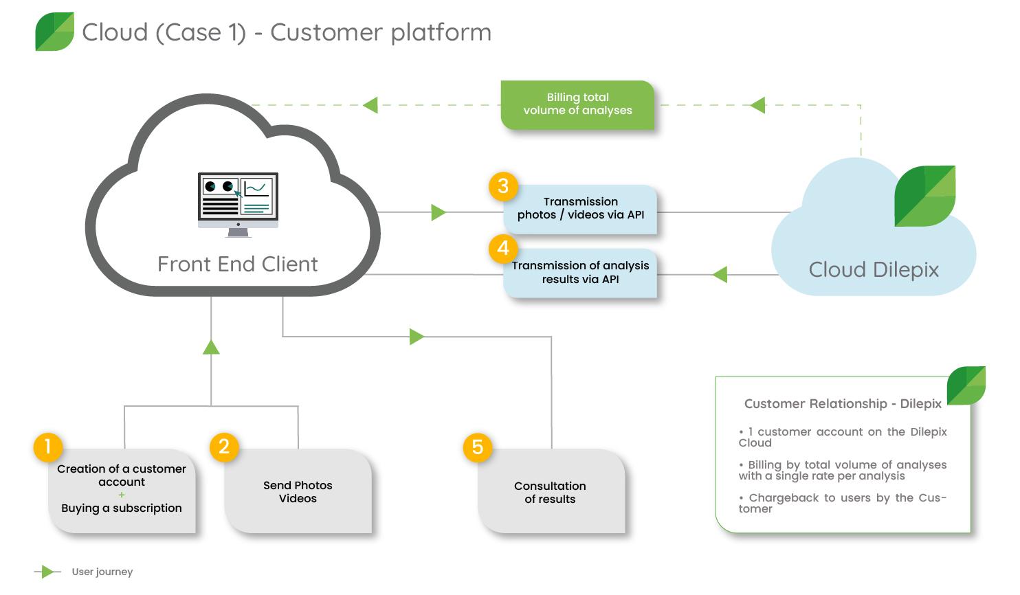 Dilepix Cloud scenario 1 customer platform