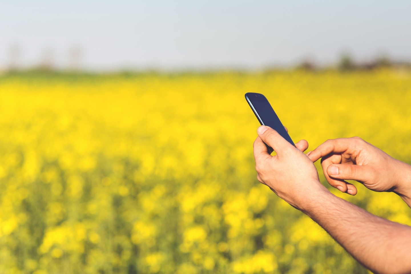 How agriculture is shaken up by digital technology