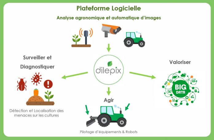 Dilepix winner programNetva
